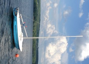 Family daysailer vs 2nd Sunfish | SailingForums com