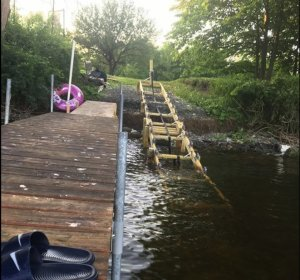 IMAGE 10-31-19 AT 2.44 PM.jpeg