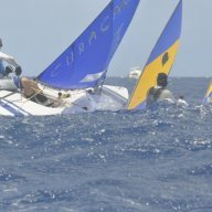 Sail59541
